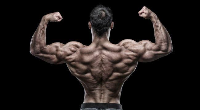 definizione-muscolare_scheda