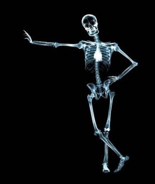 large_esqueleto_humano_83565