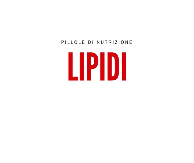 pillole-di-nutrizione_-lipidi