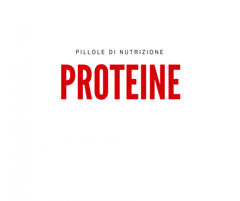 pillole-di-nutrizione_-proteine